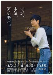 achimoi20190630-sugi-01.jpg